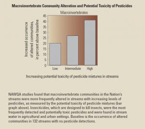 Microinvertebrates
