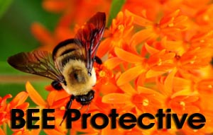 BeeProtectivelogo