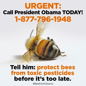 ObamaProtectBeesActionCall_1