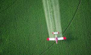 Common Herbicides Linked to Antibiotic Resistance