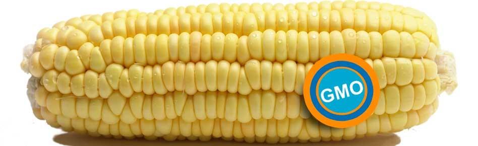 Herbicide Tolerant Crops — Beyond Pesticides